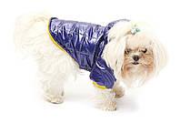 Куртка блестящая Jester  для собачек 45см Croci C7274021