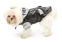 Куртка Everest  для собачек 35см Croci C7174321