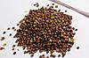Семена редис Жара 20г Красный (Малахiт Подiлля), фото 7