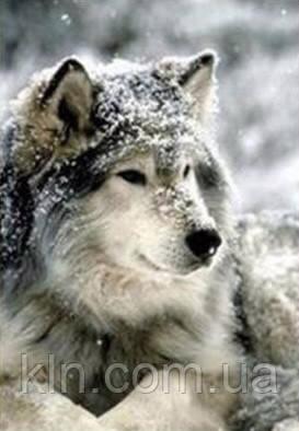 Набор алмазной вышивки Волк в снегу 30 х 40 см (арт. FS333)