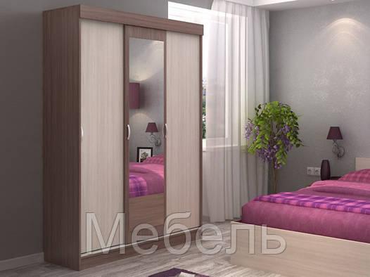 Шкаф купе ШК-551 спальня Бася ф-ка Сурская Мебель