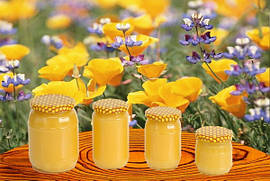 Мед подсолнечника с липой 400г