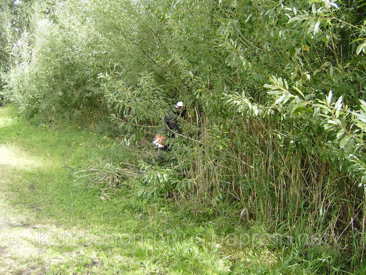 Покос травы в Киеве