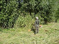 Покос травы (067)4093070 Звоните