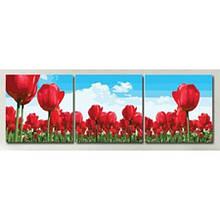 Триптих з картин за номерами Тюльпани