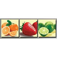 Триптих розфарбування по номерах Різнокольорові фрукти