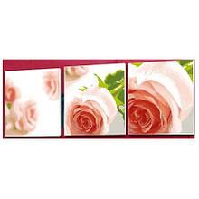 Триптих Композиция из роз