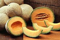 Дыня: как вырастить и приготовить бахчевые деликатесы