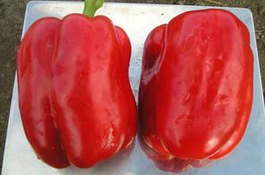 Семена перца Геркулес F1, 50 сем — среднеранний (70-75 дней), кубовидный, красный, сладкий, Clause, фото 2