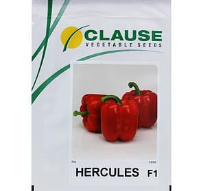 Семена перца Геркулес F1 (Clause) 5 г — среднеранний (70-75 дней), кубовидный, красный, сладкий, фото 2