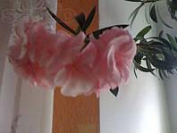 Олеандр розовый махровый