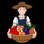 Мікродобрива ЯРИЛО Овочевий, фото 2