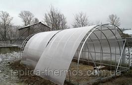 Поликарбонат прозрачный для теплицы