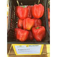 Семена перца Карисма F1 (Clause) 5000 семян - ранний (70 дней), кубовидный, красный, сладкий