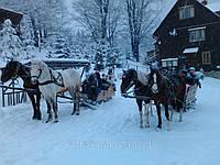 Катання на конях в Карпатах