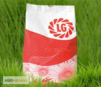 Семена Подсолнечника LG 5580 (Лимагрейн)
