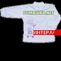 Детская кофточка р. 68  демисезонная ткань ИНТЕРЛОК 100% хлопок ТМ Алекс 3173 Голубой1