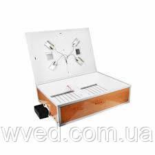 Автоматический инкубатор Курочка Ряба 120 яиц ламповый