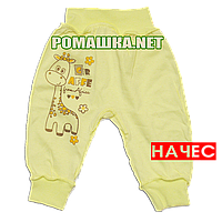 Штанишки на широкой резинке с начесом р. 74 ткань ФУТЕР 100% хлопок ТМ Алекс 3179 Желтый
