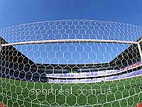 Сетка футбольная  (нейлон, р-р 7,24*2,23м, ячейка 6-ти угольная,PVC чехол, в компл. 2 шт.)