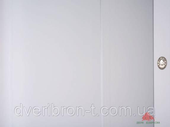 Двери Белоруссии Европа белая эмаль ПГ, фото 2