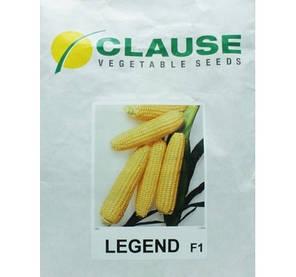 Семена кукурузы Леженд F1 (Clause), 1 кг — ранняя (70 дней), сахарная, фото 2