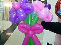 Букет из воздушных шариков, цветы из воздушных шариков. В букете 3  цветочка
