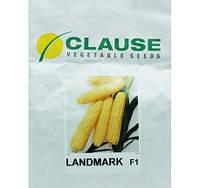 Семена кукурузы Лендмарк F1 (Clause) 1 кг - ранняя (70-73 дня), сахарная. Очень сладкая!!!