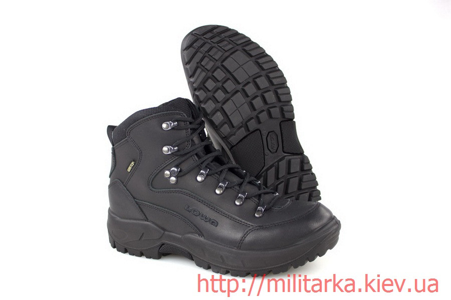 Ботинки демисезонные Lowa Renegade GTX® MID TF