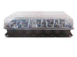 Минипарник   33 ячейки (+поддон и крышка) яч (d) 50х40х60 (h)  Сервіс Пак