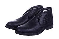 Туфли CG Desert Boots Winter Leather Navy Blue мужские  мужские