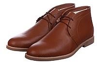 Туфли  CG Desert Boots Winter Leather Chestnut мужские  мужские