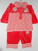 Костюм д.вел./68-86/ 1524 плаття+штани,квіточ.