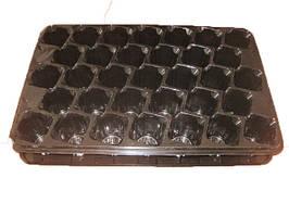 Пластиковая   кассета для рассады на 33ячейки (+поддон) яч (d) 50х40х60 (h)  Сервіс Пак