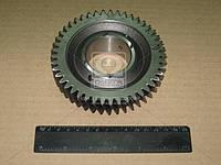 Шестерня 1- й передачи вала вторичного КПП ГАЗ 3302,3110 ( новый образца)  3110-1701106