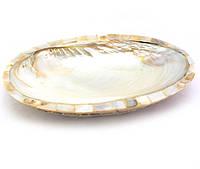 Блюдо ракушка из корицы со смолой и перламутра белое (23,5х15,5х3 см)