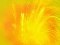 Пигмент жидкий, желтый про-во Швейцария