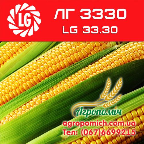 Кукуруза ЛГ 3330 (LG 33.30)