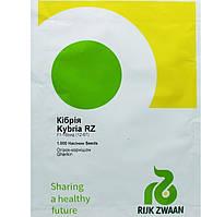 Семена огурца Кибрия (Kybria RZ) F1, 1000 шт- партенокарпический корнишон