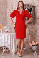 Стильное трикотажное платье с рукавом реглан
