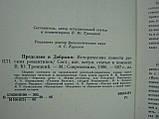 Предслава и Добрыня (б/у)., фото 5