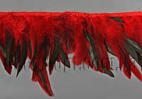Перо-юбка красная с черными хвостиками 15-20см/45-47см