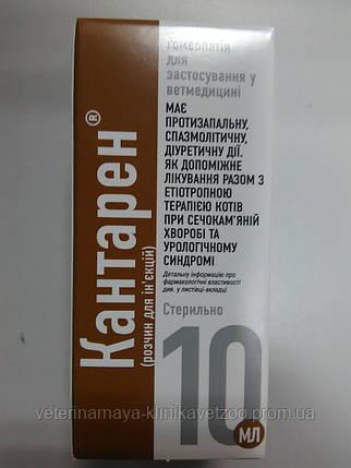 Кантарэн10мл(для лечения мочекаменной болезни и урологического синдрома у уживотных), фото 2