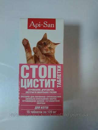 Стоп Цистит- суспензия(для лечения и профилактики цистита  и мочекаменной болезни кошек), фото 2