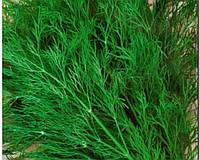 Семена укропа Грибовский весовые
