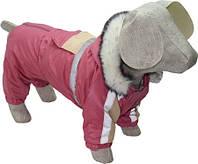 Зимний костюм для собак с капюшоном Аляска №3 (43*64)
