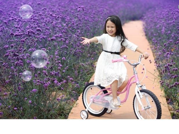 Велосипеды для девочек Royalbaby