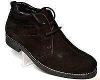 Классические зимние мужские ботинки дезерты Rosso Avangard. Carlo Pa Nub  черный нубук