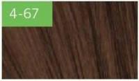 Краситель для волос Schwarzkopf Professional ESSENSITY  4-67 Средний Коричневый Шоколадный Медный, 60 мл