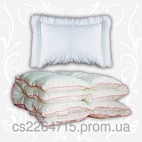 Комплект Зимний сон, (одеяло+подушка), 110 х140